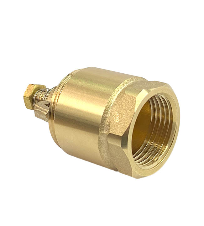 brass NPT female foot valve